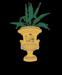PALAZZO CASTELLUCCIO